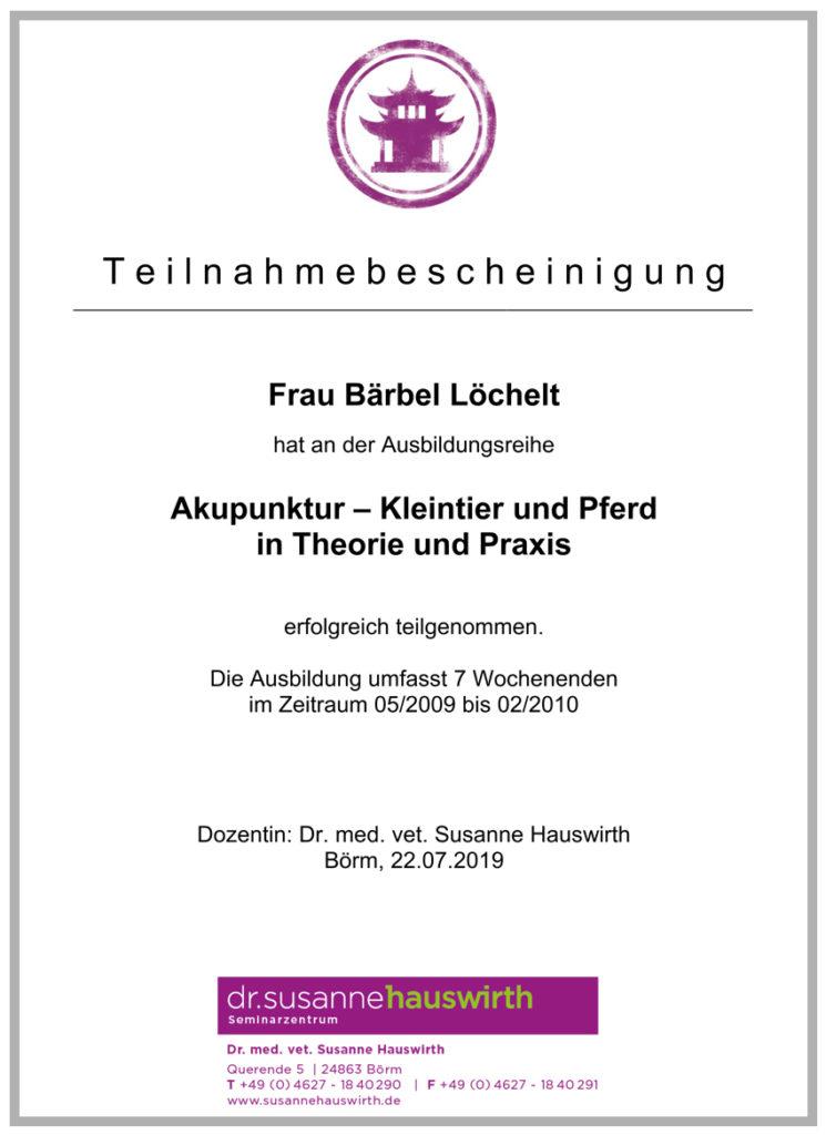 2009 2010 baerbel loechelt akupunktur fortbildung